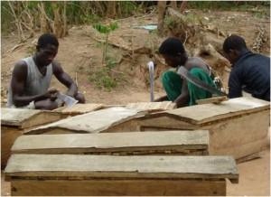 Men constructing hives