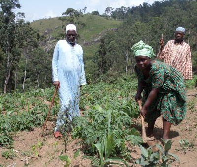Farmers and Herders work together to alleviate conflict and enhance communities
