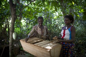 YOWE supported bee keepers and farmers Thomas and Rachel Djangme in the village of Korme Towe