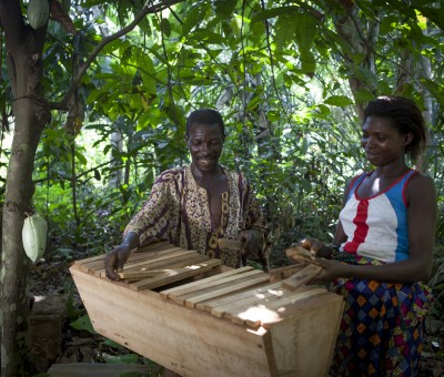 Thomas' buzz for beekeeping in Korme Towe, Ghana