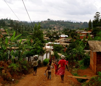 Reducing conflict in Cameroon: natural resource management